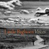 Little Bighorn Voices