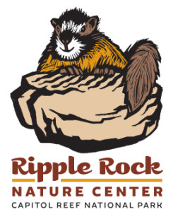 Ripple Rock square logo